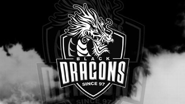 Read more about the article TP-Link firma parceria com equipe de e-sports Black Dragons
