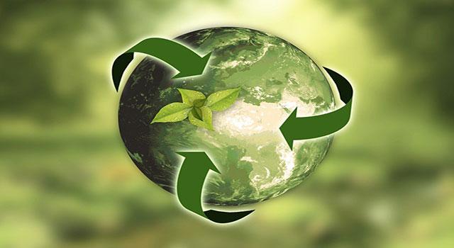 Read more about the article Magalu passa a fazer coleta de lixo eletrônico
